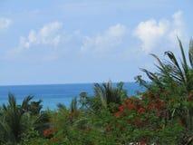 Céu, mar, nuvens e palmeiras Fotos de Stock Royalty Free