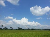 Céu na exploração agrícola Imagem de Stock Royalty Free
