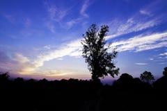 Céu na manhã foto de stock