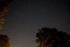 Céu na noite - ajardine na noite, no céu claro e nas muitas estrelas Foto de Stock Royalty Free