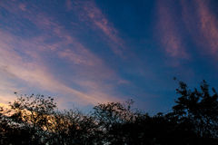 Céu nebuloso crepuscular Fotos de Stock Royalty Free