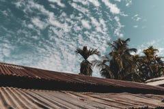 Céu nebuloso e azul com vento fotos de stock