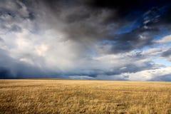 Céu nebuloso e prado fotografia de stock