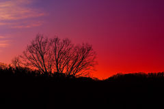 Céu no fogo Imagem de Stock Royalty Free