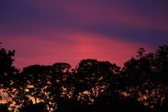 Céu no incêndio Fotografia de Stock