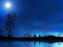 Céu nocturno Imagem de Stock Royalty Free