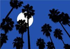 Céu noturno agradável Foto de Stock