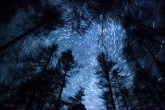 Céu noturno bonito, fugas espirais da estrela e floresta foto de stock royalty free