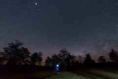 Céu noturno com estrela e árvore Fotografia de Stock Royalty Free