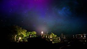 Céu noturno e árvores video estoque