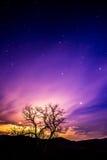 Céu noturno roxo Fotografia de Stock