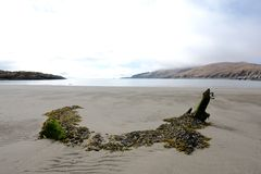Céu nublado abandonado da praia Foto de Stock