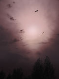 Céu obscuro Fotos de Stock