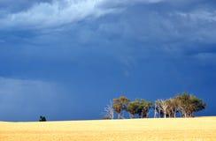 Céu tormentoso sinistro dramático sobre o campo australiano fotografia de stock