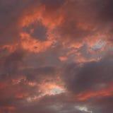 Céu vermelho brilhante Fotografia de Stock