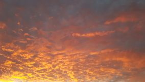 Céu vermelho no céu azul de Marrocos com Sun& x27; brilho e palmas de s foto de stock