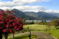 Céus azuis grandes em Kauai Fotografia de Stock