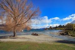 Cênico bonito do wanaka do lago no impo de Nova Zelândia da ilha sul fotos de stock royalty free