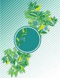 Círculo azul Imagem de Stock