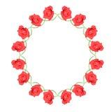 Círculo color de rosa del rojo Fotos de archivo libres de regalías