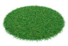 Círculo cubierto con la hierba verde Imagen de archivo libre de regalías