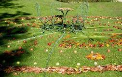 Círculo de hojas con las manzanas y la mesa de centro en el jardín del castillo en el pueblo de Strassoldo Friuli (Italia) Fotos de archivo
