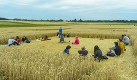 Círculo de la cosecha del UFO en campo de trigo Imagenes de archivo