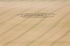 Círculo de la cosecha en campo Foto de archivo libre de regalías