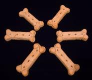 Círculo de la galleta de perro Fotografía de archivo libre de regalías