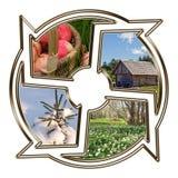 Círculo de la vida Imagen de archivo