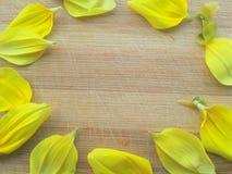 Círculo de los pétalos de la flor de la dalia en fondo de madera Fotos de archivo libres de regalías