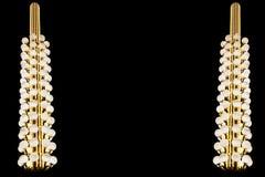 Círculo de lujo del bulbo de los posts de la lámpara Foto de archivo libre de regalías