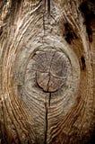 Círculo de madera del nudo Fotos de archivo libres de regalías