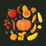 Círculo de vegetais vermelhos e amarelos ilustração do vetor