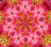 Círculo del caleidoscopio del color Imagen de archivo libre de regalías