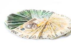 Círculo del dinero polaco Foto de archivo libre de regalías