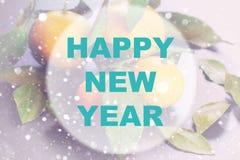Círculo del fondo de la Feliz Año Nuevo Imagenes de archivo