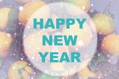 Círculo del fondo de la Feliz Año Nuevo Imagen de archivo