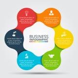 Círculo del vector infographic libre illustration