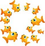 Círculo do peixe dourado Fotografia de Stock Royalty Free