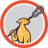 Círculo dos desenhos animados da vara de Crosse do jogador da lacrosse do cão ilustração royalty free