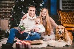 Círculo familiar de la Navidad del tema y del Año Nuevo y animal doméstico nacional Papá de la mamá y mujer caucásica de 1 año de imagenes de archivo
