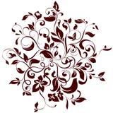 Círculo floral Imagenes de archivo
