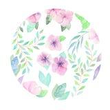 Círculo floral da aquarela Fotos de Stock