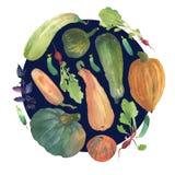 Círculo vegetal de la acuarela con un ejemplo natural de los veggies para la muestra del diseño, logotipo del negocio agrícola, b ilustración del vector