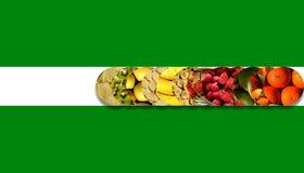 Círculos alinhados internos dos frutos frescos doze fotografia de stock