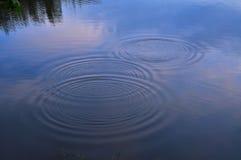 Círculos da água foto de stock