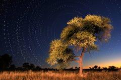 Círculos de la estrella Imagen de archivo libre de regalías