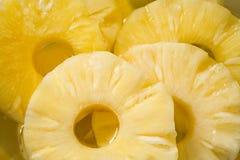 Círculos de la piña Imagen de archivo