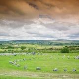 Círculos de pedra, Beaghmore imagem de stock royalty free